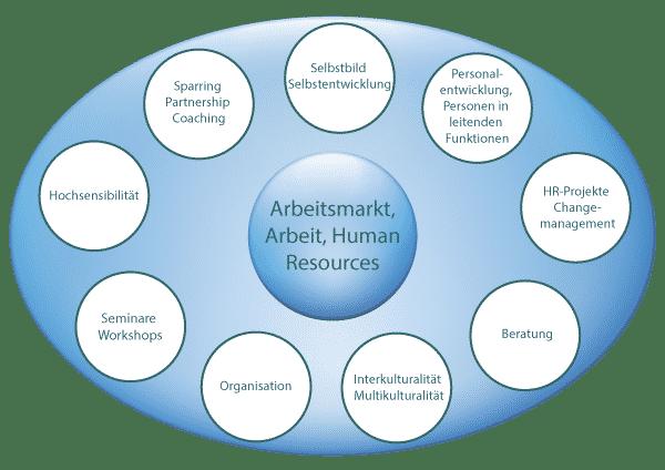 Angebotsgrafik-Anceschi-Human-Consulting-GmbH